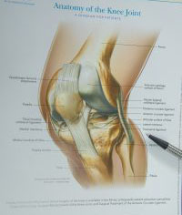 Knee Ligament Injuries and Reconstruction